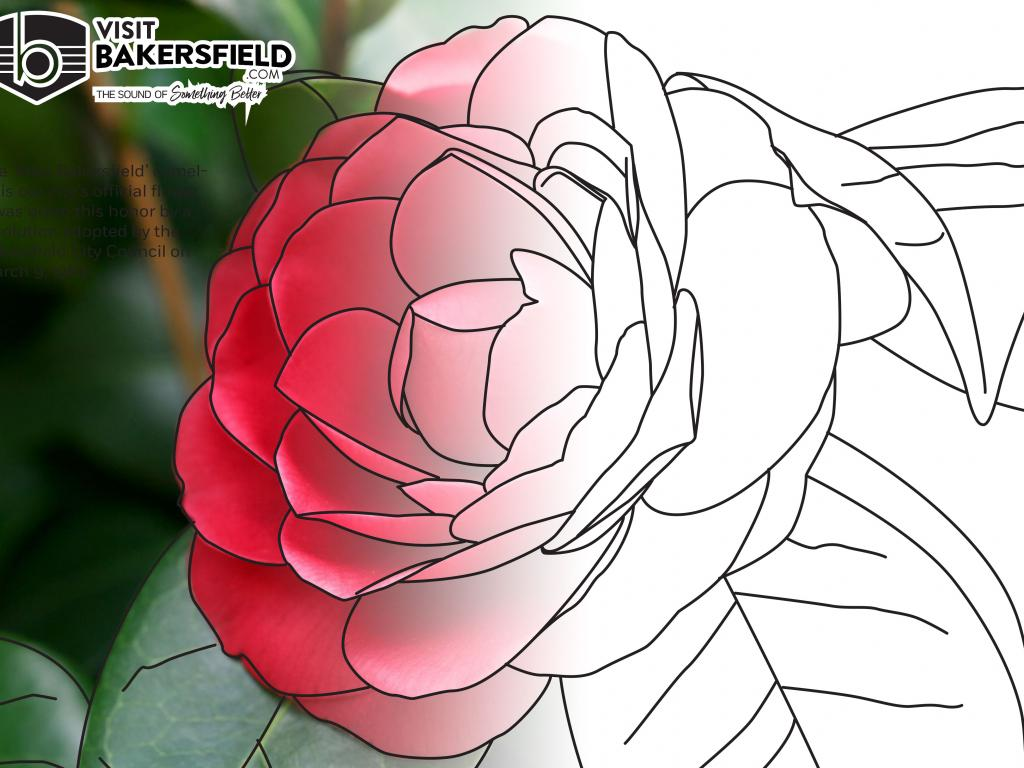 Visit Bakersfield Coloring Book Contest Week Fourteen